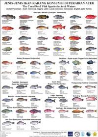 Names of saltwater fish for Ocean fish names
